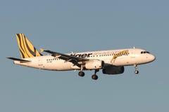 Tiger Airways Airbus A320-232 VH-VNP na aproximação à terra no aeroporto internacional de Melbourne Imagem de Stock