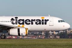 Tiger Airways Tigerair Airbus A320 flygplan på Sydney Airport Arkivbild