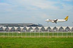 Tiger Airways Tigerair nivå som landar till landningsbanor på den internationella flygplatsen för suvarnabhumi i Bangkok royaltyfria bilder