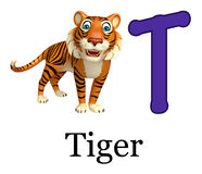 Tiger with alphabet Royalty Free Stock Photos