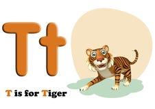 Tiger with alphabet Stock Photo