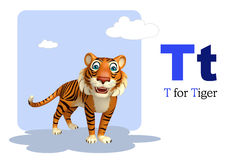 Tiger with alphabet Stock Image