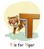 Tiger with alphabet Royalty Free Stock Photography