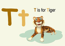 Tiger with alphabet Royalty Free Stock Photo