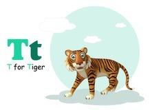 Tiger with alphabet Stock Photos