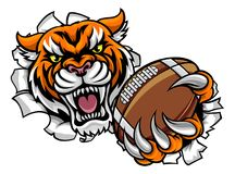 Tiger American Football Ball Breaking Background. A Tiger angry animal sports mascot holding an American football ball and breaking through the background with vector illustration