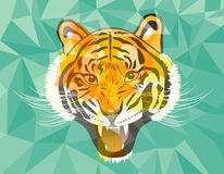 Tiger anger geometric style Royalty Free Stock Images