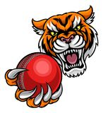 Tiger Holding Cricket Ball Mascot. A Tiger angry animal sports mascot holding a cricket ball stock illustration