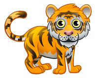 Tiger Animal Cartoon Character Photos libres de droits
