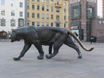 Tiger animal of class Mammalia mammals in Oslo. OSLO, NORWAY - CIRCA AUGUST 2017: tiger Panthera tigris felidae animal of phylum Chordata, class Mammalia mammals royalty free stock image