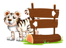 A tiger at the back of a wooden signboard Stock Photos