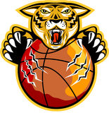Tiger Basketball Ball Claws Illustration Stock