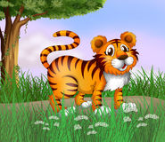 A tiger and a beautiful nature Stock Photo