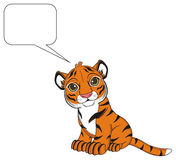 Tiger and black footnote Stock Photography