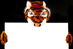 Tiger With Blank Sign Stock Images