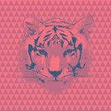 Tiger Bleistiftzeichnung einer schönen Frau Lizenzfreies Stockbild
