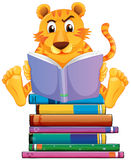 Tiger and books Royalty Free Stock Photos