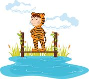 Tiger boy Royalty Free Stock Photos