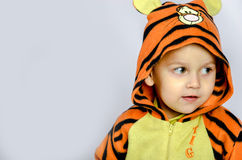 Tiger boy. Funny boy in the tiger's clothes Stock Photo