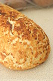 Tiger Bread Stock Images