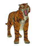 Tiger bullying Royalty Free Stock Photography
