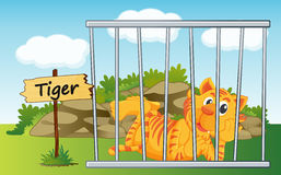 Tiger in cage. Illustration of a tiger in cage and wooden board Royalty Free Stock Photos