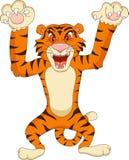 Tiger cartoon. Illustration of angry tigerr cartoon Royalty Free Stock Photos