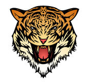 Tiger cat aggressive (vector) Royalty Free Stock Photography
