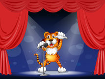 A tiger at the center of the stage Royalty Free Stock Photos