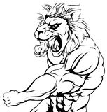 Tiger character punching. An illustration of a tough lion animal character or sports mascot punching Stock Photo