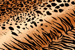 Tiger Cheetah Print Background Royalty Free Stock Photos