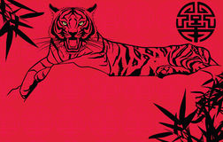 Tiger Chinese new year. Original illustration of  Tiger Chinese new year Royalty Free Stock Images