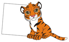 Tiger with clean paper Stock Images