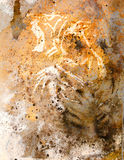 Tiger collage on color abstract  background,  rust structure, wildlife animals Stock Image