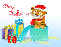 A tiger cub sits near boxes with gifts. Tiger cub symbol 2010 years next to gifts Stock Image
