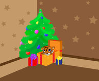 Tiger cub under a new-year tree Stock Photography