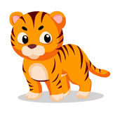 Tiger so cute Royalty Free Stock Image