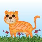 Tiger cute landscape Stock Images