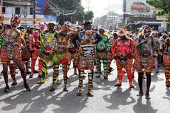 Tiger dance procession royalty free stock photo
