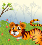 A tiger in the dark forest Royalty Free Stock Photography