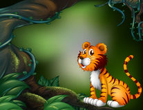 A tiger in the dark forest Royalty Free Stock Photo