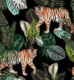 Tiger dark jungle pattern. Going exotic animal tiger in the dark jungle pattern black background illustration seamless vector trendy composition beach wallpaper Royalty Free Stock Images