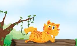 Tiger, der auf Holz stillsteht stock abbildung