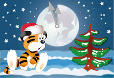 Tiger in der Erwartung des neuen Jahres Stockbild
