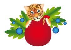 Tiger des neuen Jahres Lizenzfreie Stockbilder
