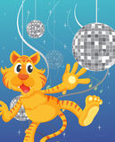 A tiger and the disco lights Stock Photography