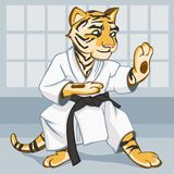 Tiger is dressed in a kimono is engaged in karate. Tiger is in the position of a karate fighter. It is dressed in a kimono with a black belt. There are any Stock Photo