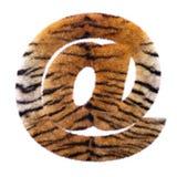 Tiger email sign - 3d at sign Feline fur symbol - Suitable for Safari, Wildlife or big felines related subjects. Tiger email sign - 3d Arobase symbol Feline fur stock illustration