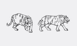 Tiger emblem set Royalty Free Stock Photos