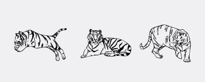 Tiger  emblem set Stock Images